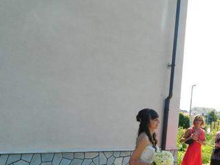 Alca spose 1