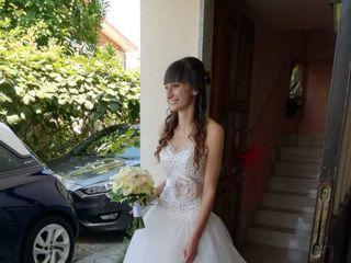 Alca spose 2