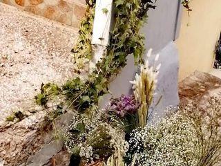 Milady di Di Lecce Milena 5