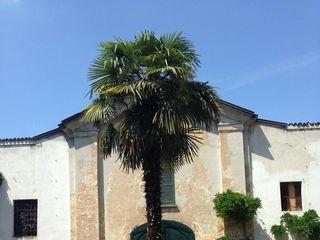 Villa Airaghi 6