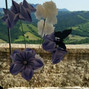 Le nozze di Sarà Torzini e Claudia Antolini Wedding Planner & Flower Designer 21