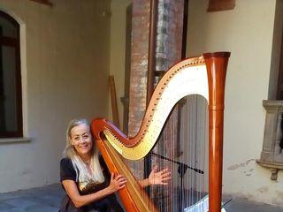 Antonella Natangelo Harp 2