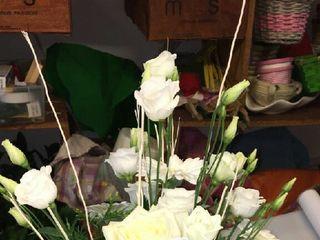 Floricoltura Rizzo 4