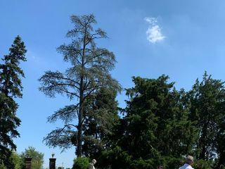 Castello di Lajone 3