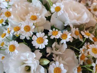 La Gardenia di Monya Spadavecchia 1