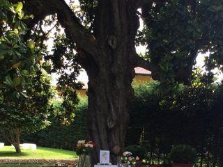 Villa Bellini 1