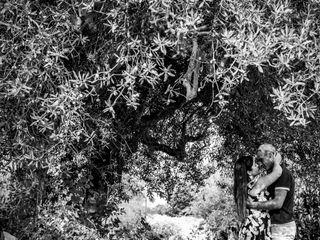 Alborino Photography & Film 2