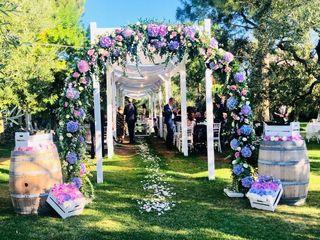Ausonia Wedding 5