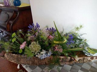 I petali di Lea 4