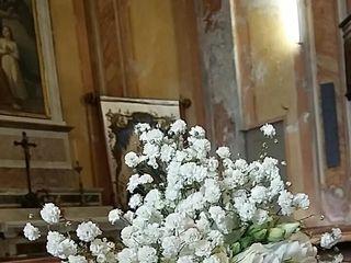 Floricoltura Stocchetti 3
