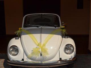 Old Beetle Eventi 3