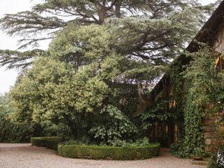 Villa Mattarana 3