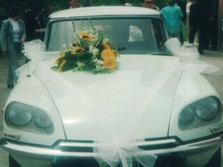 Citroen Ds Squalo - Exclusive Wedding 1