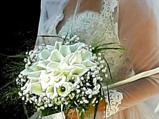 Olimpia Veronico Floral Designer 3