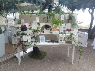 Danila Olivetti Wedding Planner 5