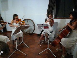 Dammen - Quartetto d'archi femminile 3
