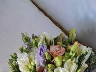 Le fiore & le piante del Maggy 4