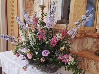Le fiore & le piante del Maggy 6