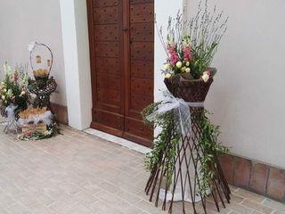 Le fiore & le piante del Maggy 7