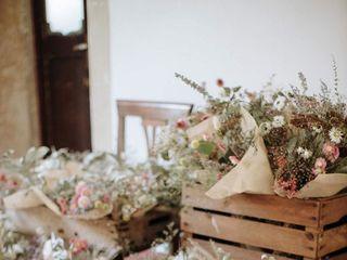 Anneris Flower Farm 3