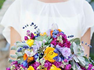 Cinzia e Lella by Daily Flowers 5