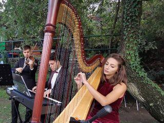 Magic Music Cerimonie Eventi 1