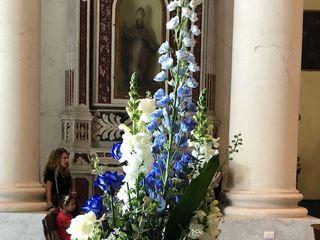 De Silvestri Floral Designer 3