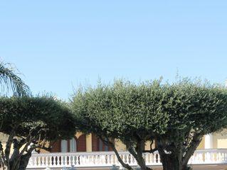 Villa Le Zagare 3