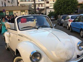 Sunny Cars 4