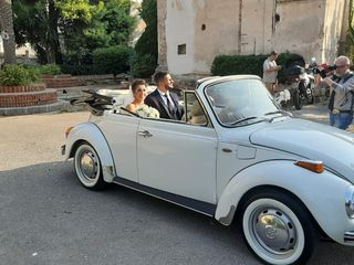 Ernesto Cars 4