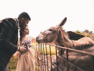 Le nozze di Rosalba e Ehab 3
