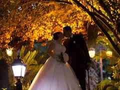 le nozze di Sara e Andrea 480
