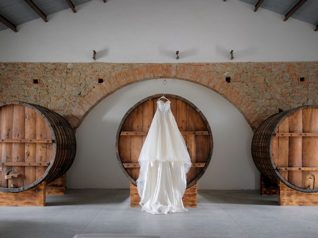Il matrimonio di Fabian e Ramona a Cirò Marina, Crotone 9