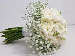 Le nozze di Francesca e Rosario 1