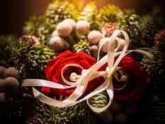 le nozze di Paola e Giacomo 2