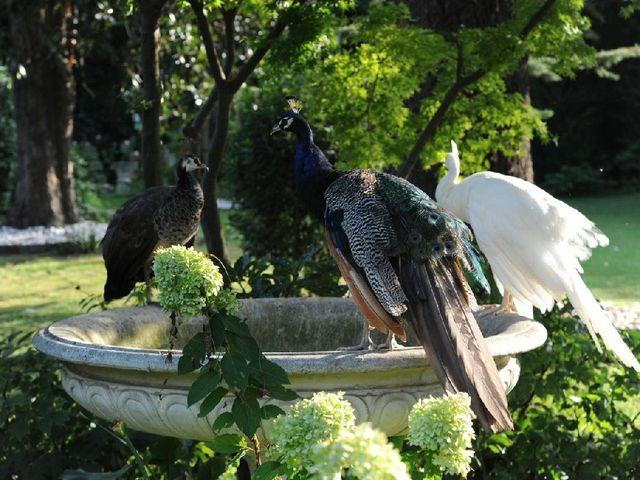 Il matrimonio di Giulia e Massimiliano a Polesella, Rovigo 4