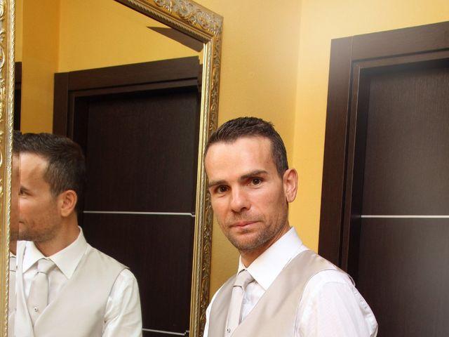 Il matrimonio di Mirco e Stefania a Triuggio, Monza e Brianza 4