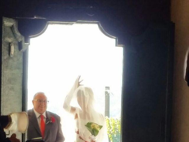 Il matrimonio di Michele Criscuolo e Silvia Benaglio a Calco, Lecco 10