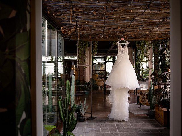Il matrimonio di Fabio e Deborah a Travagliato, Brescia 3