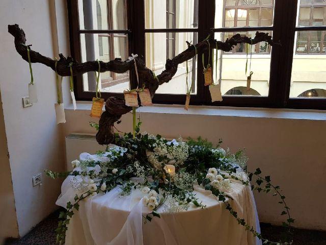 Il matrimonio di Alberto  e Manuela  a Vo, Padova 3