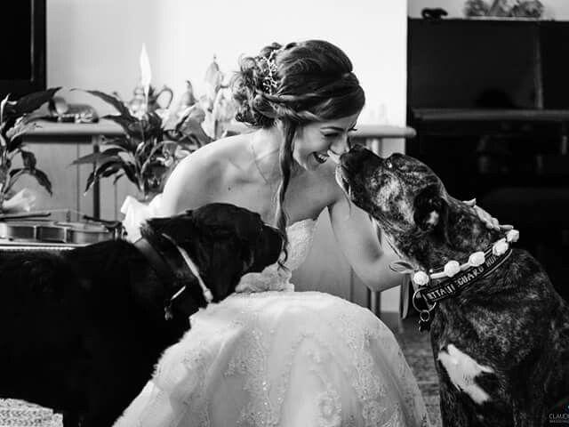 Il matrimonio di Luigi e Rita a Lettere, Napoli 11