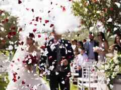 le nozze di Barbara e Maurizio 291