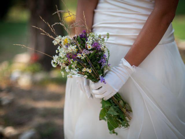 Il matrimonio di Alessandro e Paola a Padenghe sul Garda, Brescia 15