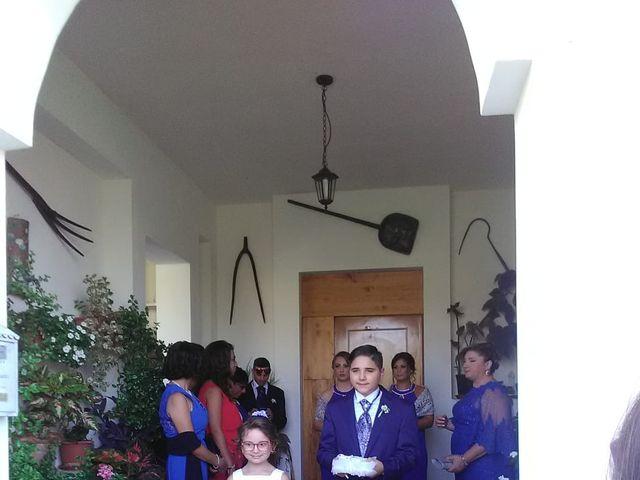 Il matrimonio di Gaetano  e Aleandra  a Buseto Palizzolo, Trapani 20