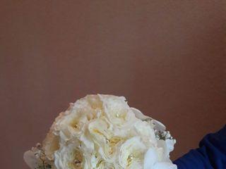 Le nozze di Anna  e Pasquale  3