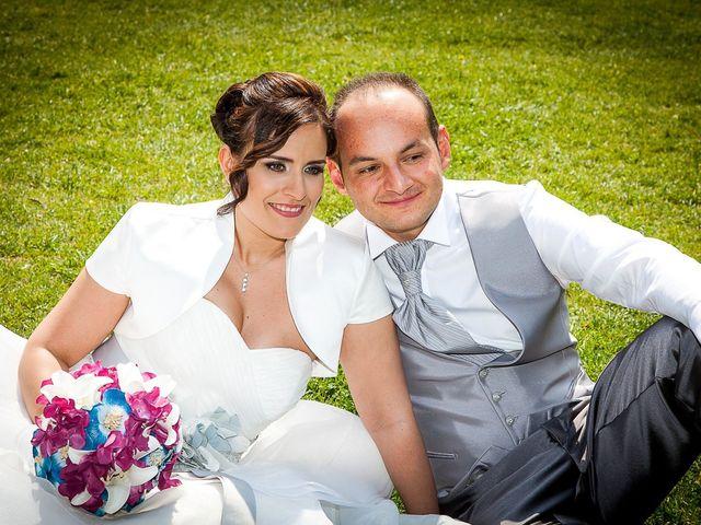 Il matrimonio di Davide e Elena a Casalgrande, Reggio Emilia 1