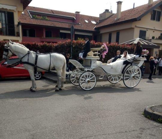 Il matrimonio di Giovanni  e Tiziana  a Gessate, Milano 5
