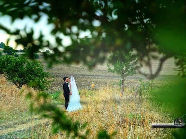 Il matrimonio di Luca  e Lorena  a Barrafranca, Enna 16