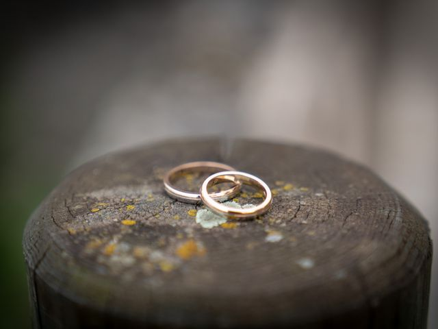 Il matrimonio di Massimo e Elena a Padenghe sul Garda, Brescia 63