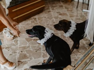 Le nozze di Annamaria e Gaetano 2